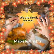 Thanksgiving Decorations for Home,Thanksgiving Lights for Table,Outdoor,Fall Map