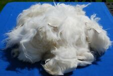 Genuine Quality Long Fur Ivory Islandic Sheepskin Off-Cuts 1kg scraps craft bag