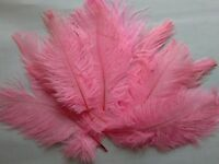 """5 pcs Ostrich Feathers Millinery & Crafts 6-8"""" Baby Pink"""
