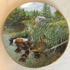 """The Northern Shoveler by Bart Jerner Collector Plate #1058F 8.5"""" 1987 Free Ship"""