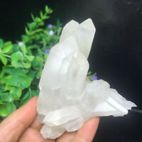 237g  Natural Clear White Quartz Crystal Cluster Rough Healing Specimen 16