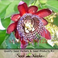 USA-Passion Flower Seeds 50pcs Certified Pure Live True Seed -(A#)