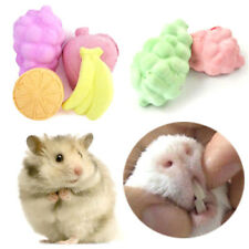 5pcs fruit chew toy hamster rat chinchilla rabbit teeth grinding mineral stoneE&