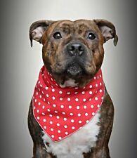 Polka Dot Dog posh pet Bandana / Scarf M / L Red . Ideal present or gift Toggles