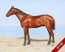 BEAUTIFUL BROWN HORSE PORTRAIT ART PAINTING REAL CANVAS PRINT