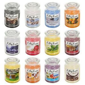 Lilly Lane 18oz Large Scented Candles In Glass Jar Fragrance Aromatic Home Gift