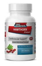 Reduce High Blood Pressure Pills - Hawthorn Extract 665mg - Garlic Powder 1B