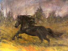 "Black Stallion Horse 18""x24"" Original Oil on canvas by   Hall Groat Sr."