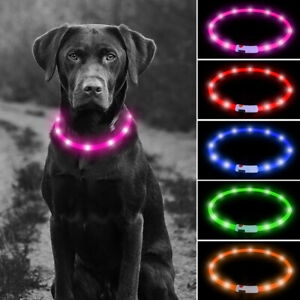 USB Rechargeable LED Dog Pet Collar Flashing 3 Size Safety Light Assorted Colour