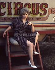 STELLA STEVENS 11x14 DBW Archival Photo Embossed MILTON GREENE IM443