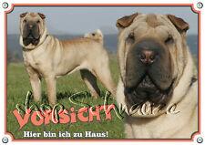 Warnschild - SHAR PEI - Faltenhund - Metallschild - Hundeschild - 1A Qualität
