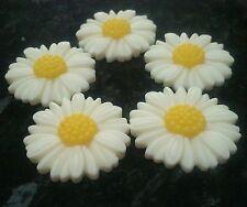 10 x Avorio Bianco & Giallo Margherita Daisies FLOWER CABOCHON RESINA da 27 mm