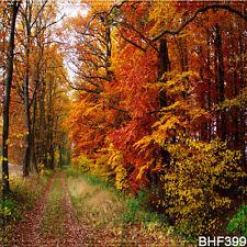 Autumn 10'x10' Computer/Digital Vinyl Scenic Photo Background Backdrop BHF399
