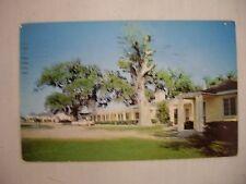 Vintage Photo Postcard Gardens Corner Court & Restaurant South Carolina 1960