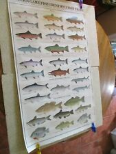 "Western Game Fish Identification Chart, Colorful, Lg 23"" X 38"", Man Cave Must!"