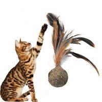 Chat Jouet Menthe de Balle Printemps Volant Animal Compagne Kauen en Bonne Santé