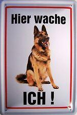 Hier wache ICH ! Schäferhund Blechschild Schild Blech Metall Tin Sign 20 x 30 cm