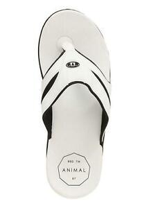 Animal Fader Sandals White