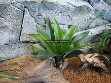 Agave Succulent 35cm Plant Reptile Enclosure Snake Lizard Frog Desert ZDP-355