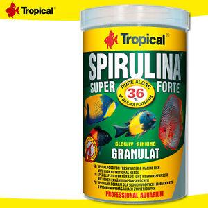 Tropical 1000 ML Spirulina Super Forte 36% Granulate