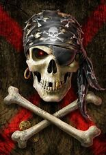 SKULL AND CROSSBONES CROSS STITCH CHART BN!