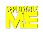 "Deplorable Me AR 5""x7"" Trump MAGA Custom Vinyl Decal"