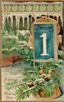 Antique Postcard Tuck's  A Happy New Year  Birds Nesting Pine Tree  1910 #600