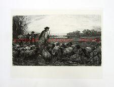 SHEEP SHEPHERD w/ GUN WATCHES WOLF ~ 1883 VON THOREN Original Art Print Etching