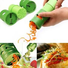 Spiral Slicer Cutter Kitchen Tool Vegetable Fruit Spiralizer Twister Peeler New