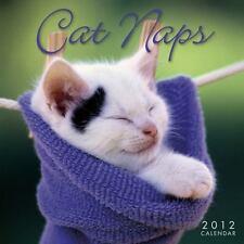 Cat Naps 2012 Mini (calendar)
