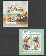 ST2792 2013 NIGER ANIMALS PETS DOMESTIC CATS CHATS DOMESTIQUES 1KB+1BL MNH