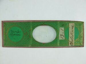 "Antique Microscope Slide by Norman. Chemical crystals. ""Cholesterine""."