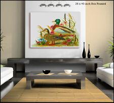 Artist Giclee & Iris Birds Art Prints