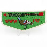 Boy Scout Tamegonit Lodge 147 OA Flap Patch BSA WWW