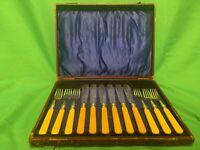 Vintage J H Potter Sheffield Silver Plate Fish Cutlery In Case Faux Bone Handle