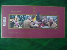 Belgie blok 20 jaar Konng Albert 11 2013 gestempeld-used