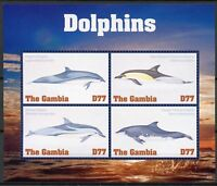 Gambia 2018 MNH Dolphins Striped Fraser's Dolphin 4v M/S Marine Animals Stamps