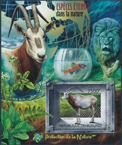 Oryx Antelope, Wild Animals, Lion, Nature Protection, BURUNDI 2012 MNH MS