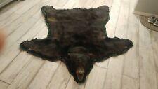 Authentic 6 Foot Michigan Black/Brown Bear taxidermy Rug/wall hanger