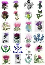 65 Mixed Scottish Thistle Small Sticky White Paper Stickers Labels New
