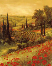 Art Fronckowiak Toscano Valley II  Landscapes European Tuscany Poster 24x30