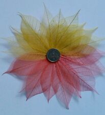 20 Hot bright (yellow & orange) Coloured Skeleton Leaves approx side 4-7cm