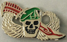 US Special Forces   -- lapel / hat pin badge. H040907
