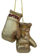Mini boxing Gloves de top ten. boxeo, kick boxing, Muay Thai, MMA, Wing Tsun,