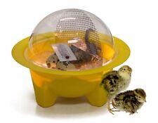 GQF Chick-Bator Mini Egg Incubator w Guide New! Quail Chicken Duck! Free Ship!