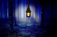 """perfect 36x24 oil painting handpainted on canvas""""Lantern in the forest """"N4391"""