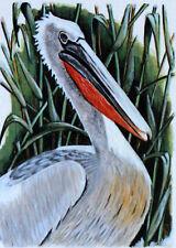 PELLICANO DI ROMANIA WWF Uccelli UCCELLO BUSTA Primo Giorno 1° FDC 3233