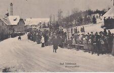 Ansichtskarten, AK, Schlesien, Bad Salzbrunn, Wintersport, Schlitten, Rodeln