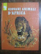 libro GIOVANI ANIMALI D'AFRICA LEONE GIRAFFA ELEFANTE rinoceronte gorilla 1972