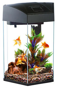 Fish R Fun Hexagon 21.6L Black Aquarium Fish Tank Starter with LED, Filter